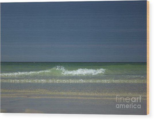 Mayflower Beach On Cape Cod Wood Print
