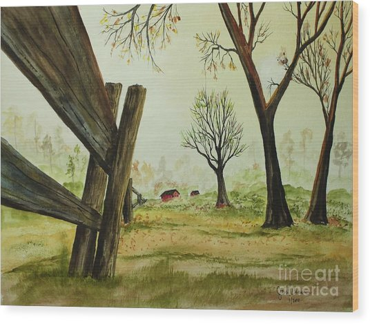 Meadow Fence Wood Print by Jack G  Brauer
