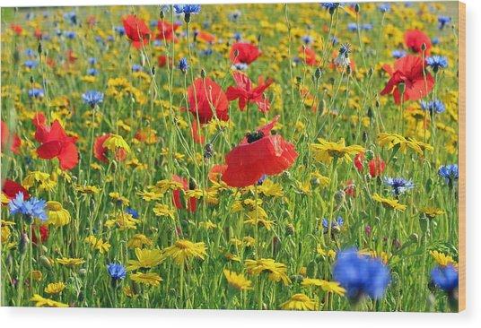 Meadow Flora Wood Print