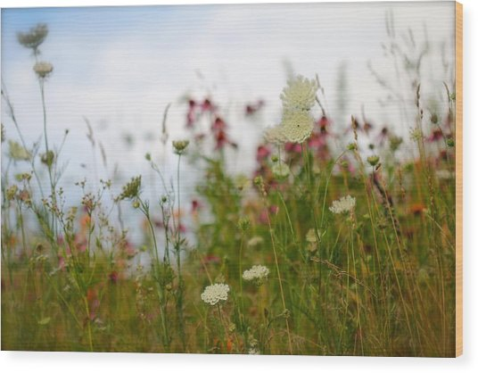 Meadow Flowers Wood Print