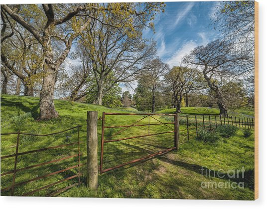 Meadow Gate Wood Print