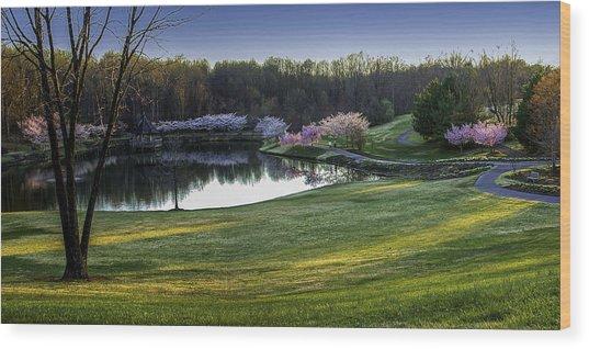 Meadowlark Gardens Wood Print