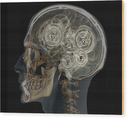 Mechanical Brain Wood Print by Zephyr/science Photo Library