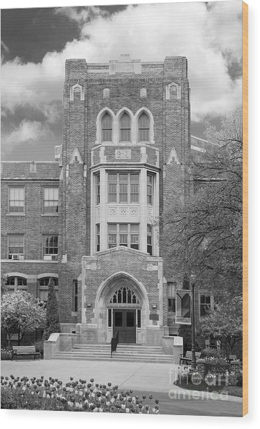 Medaille College Main Building Wood Print by University Icons