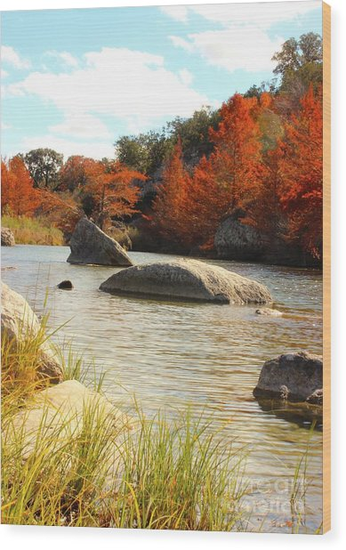 Fall Cypress At Bandera Falls On The Medina River Wood Print