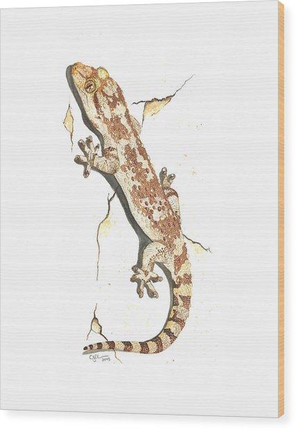 Mediterranean House Gecko Wood Print