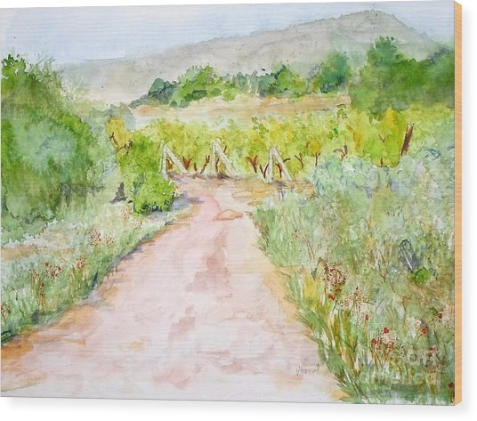 Medjugorje Path To Apparition Hill Wood Print