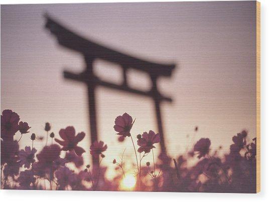Melancholic Autumn Wood Print by Koji Tajima