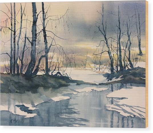 Melt Water On Skipwith Common Wood Print