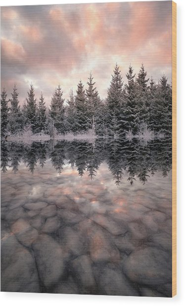 Melting Wood Print