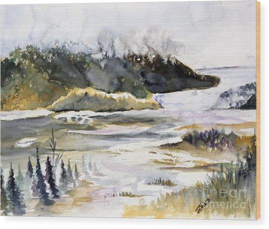 Melting Glacier Wood Print