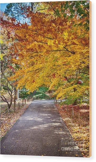 Memories Of Autumn-2 Wood Print by Tad Kanazaki