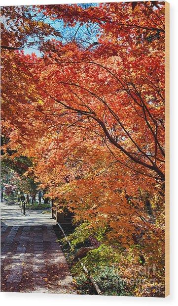 Memories Of Autumn-5 Wood Print by Tad Kanazaki