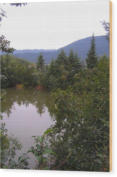 Mendenhall Pond Wood Print