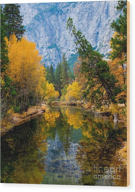 Merced River And Leaning Pine Wood Print