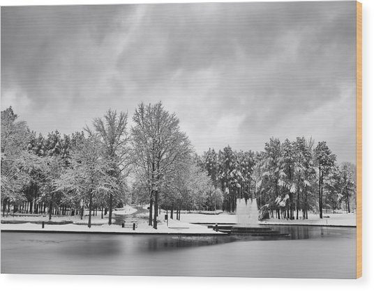 Meridian Parkway Winter Wood Print