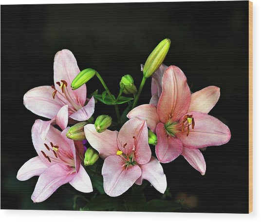 Merlot Lilies Wood Print