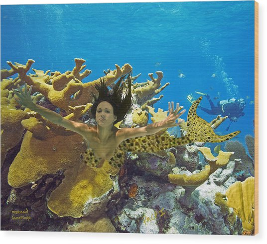 Mermaid Camoflauge Wood Print