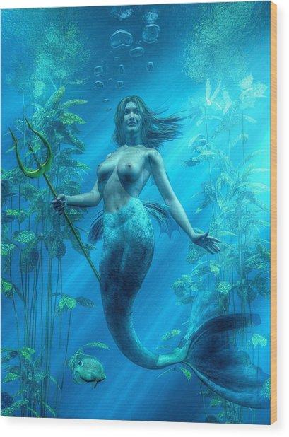 Mermaid Underwater Wood Print