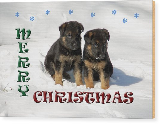 Merry Christmas Puppies Wood Print