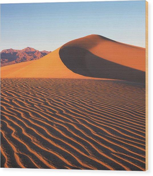 Mesquite Dunes 1-sq Wood Print
