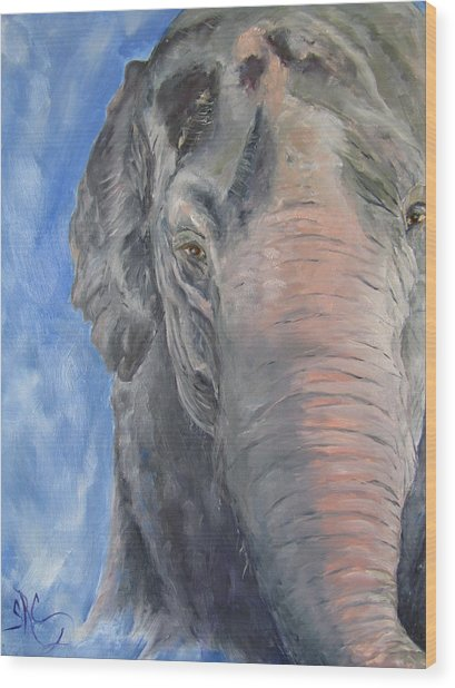 The Elder, Methai An Elephant Wood Print