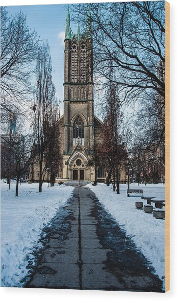 Wood Print featuring the photograph Metropolitan United Church - Colour  by Rosemary Legge
