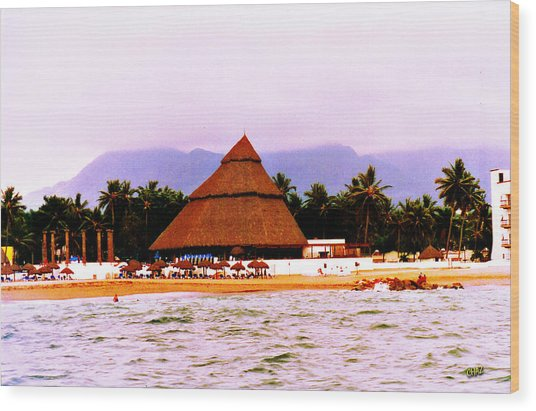 Mexican Beach Party Wood Print