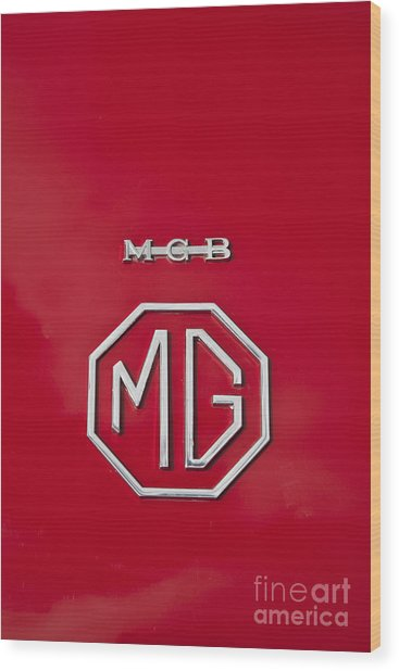 Mg Badge 1 Wood Print