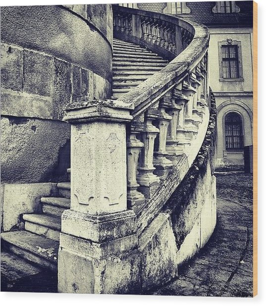 #mgmarts #architecture #castle #steps Wood Print