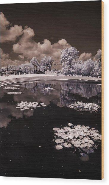 Miami Beach Lake Wood Print