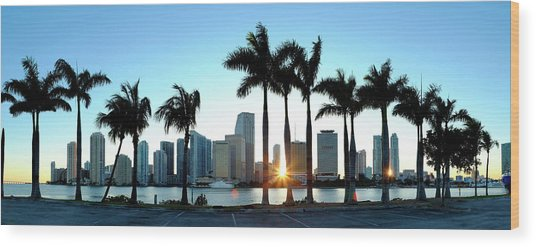 Miami Skyline Viewed Over Marina Wood Print by Travelpix Ltd
