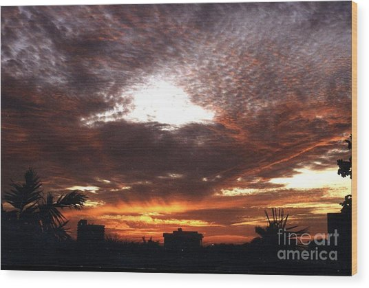 Miami Sunset Wood Print by Steven Valkenberg