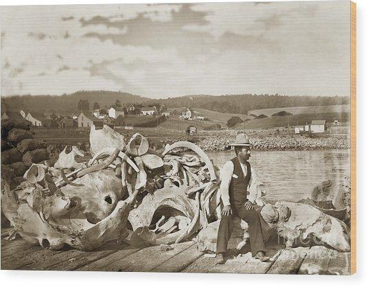 Michael Noon Sitting On A  Pile Of Whale Bones Monterey Wharf  Circa 1896 Wood Print