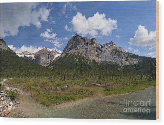 Michael Peak Wood Print
