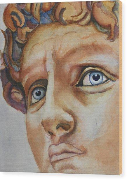 Michelangelo's David In Color Wood Print
