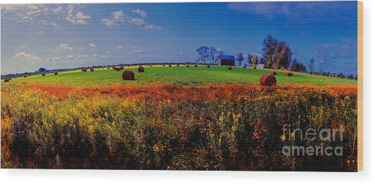 Michigan Uper  Farm Barn And Rolls Of Hay Brimly Michigan Wood Print