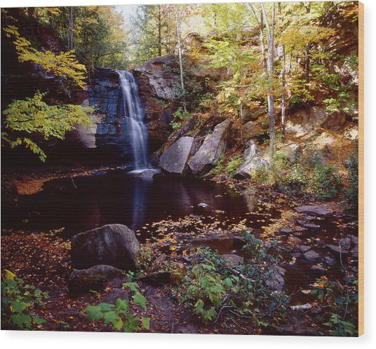 Middle Hungarian Falls Wood Print by Tim Hawkins
