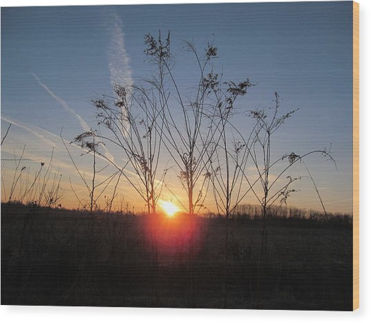 Middle Of The Field Sunrise Wood Print