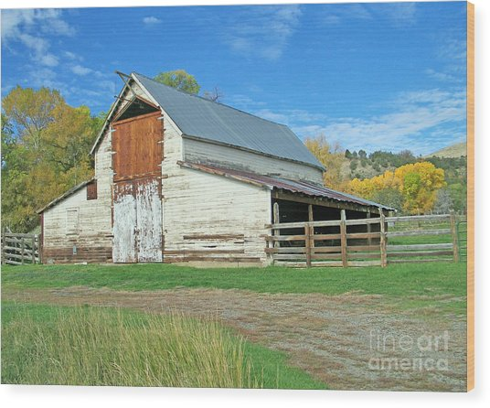 Midway Vintage Barn Hotchkiss Co Wood Print