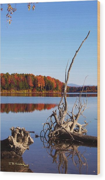 Mighty Missisquoi II Wood Print