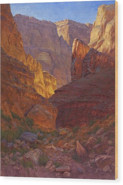 Mile 202 Canyon Wood Print