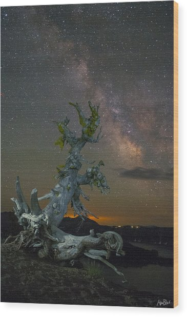 Milky Way Tree Wood Print by Abe Blair