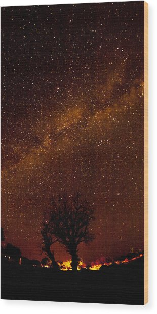 Milky Way Tree Wood Print