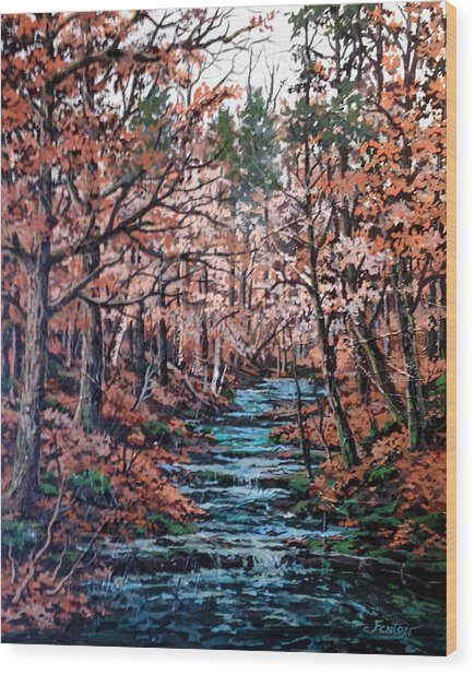 Mill Creek Wood Print by W  Scott Fenton