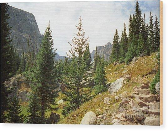 Mill Lake Wood Print