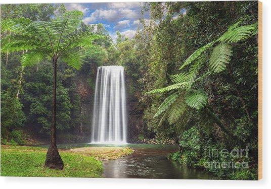 Milla Milla Falls Wood Print by Shannon Rogers