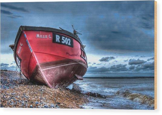 Millie G Wreck Wood Print