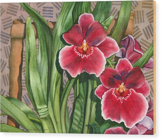Miltonia Orchids Wood Print
