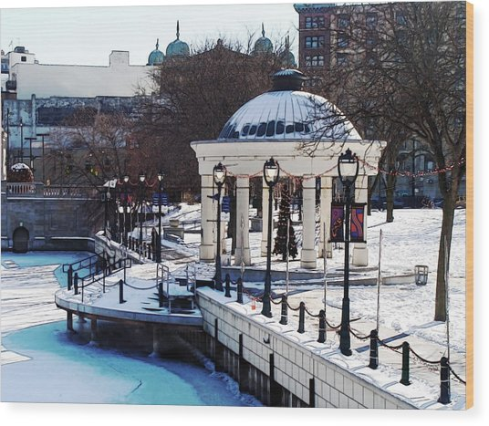 Milwaukee River Walk 3 - Pere Marquette Park - Winter 2013 Wood Print by David Blank